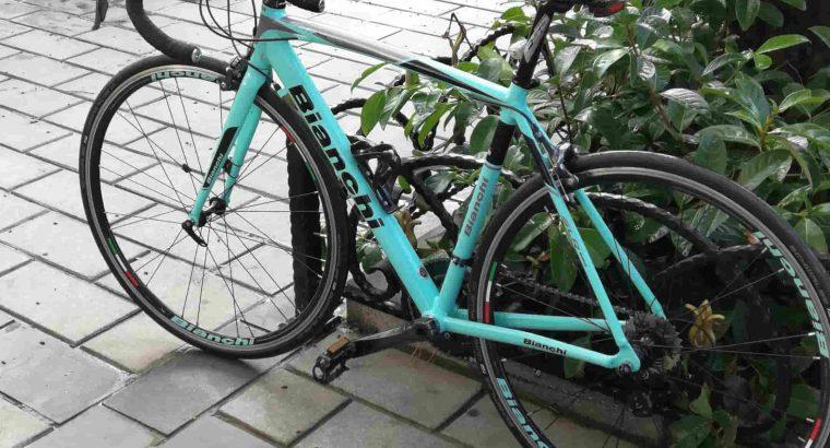 BIANCHI SLR600 51 Kadro